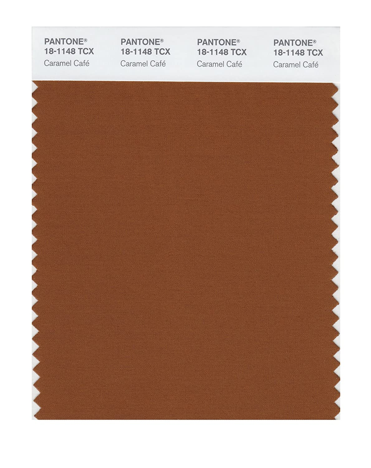 Pantone 18-1148 TCX Smart Color Swatch Card, Caramel Café - House Paint -  Amazon.com