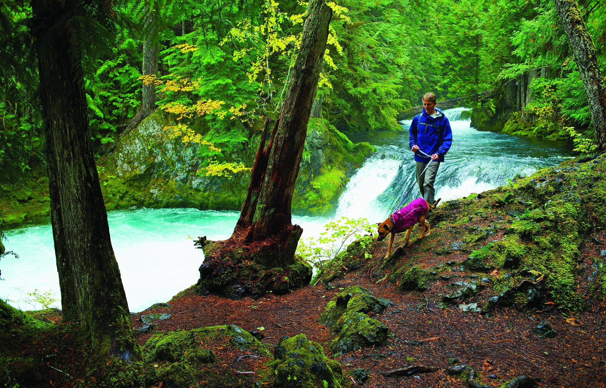 RUFFWEAR - Sun Shower Waterproof Rain Jacket for Dogs, Purple Dusk, Large by RUFFWEAR (Image #4)