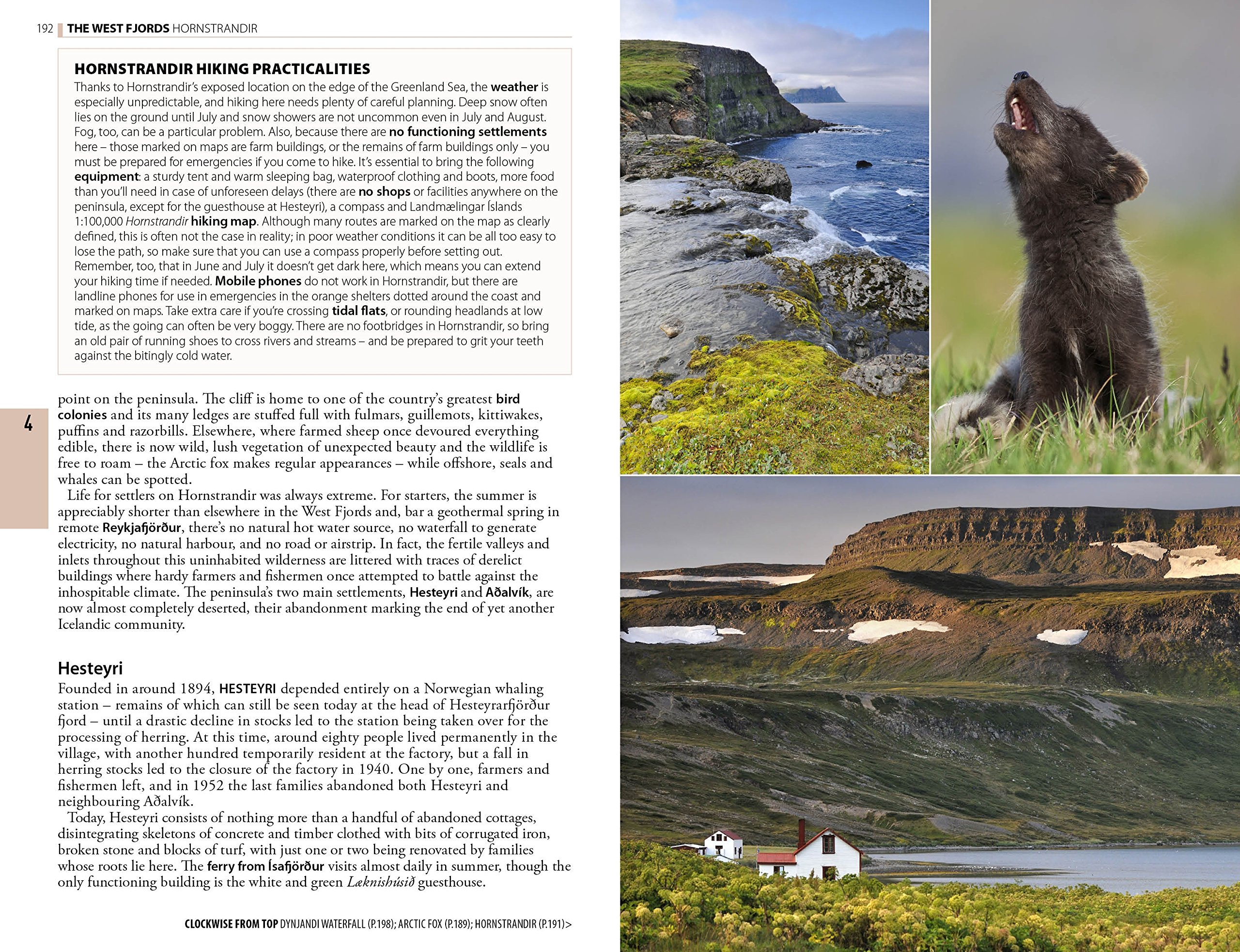 The Rough Guide to Iceland: David Leffman, James Proctor: 9781409363811:  Amazon.com: Books