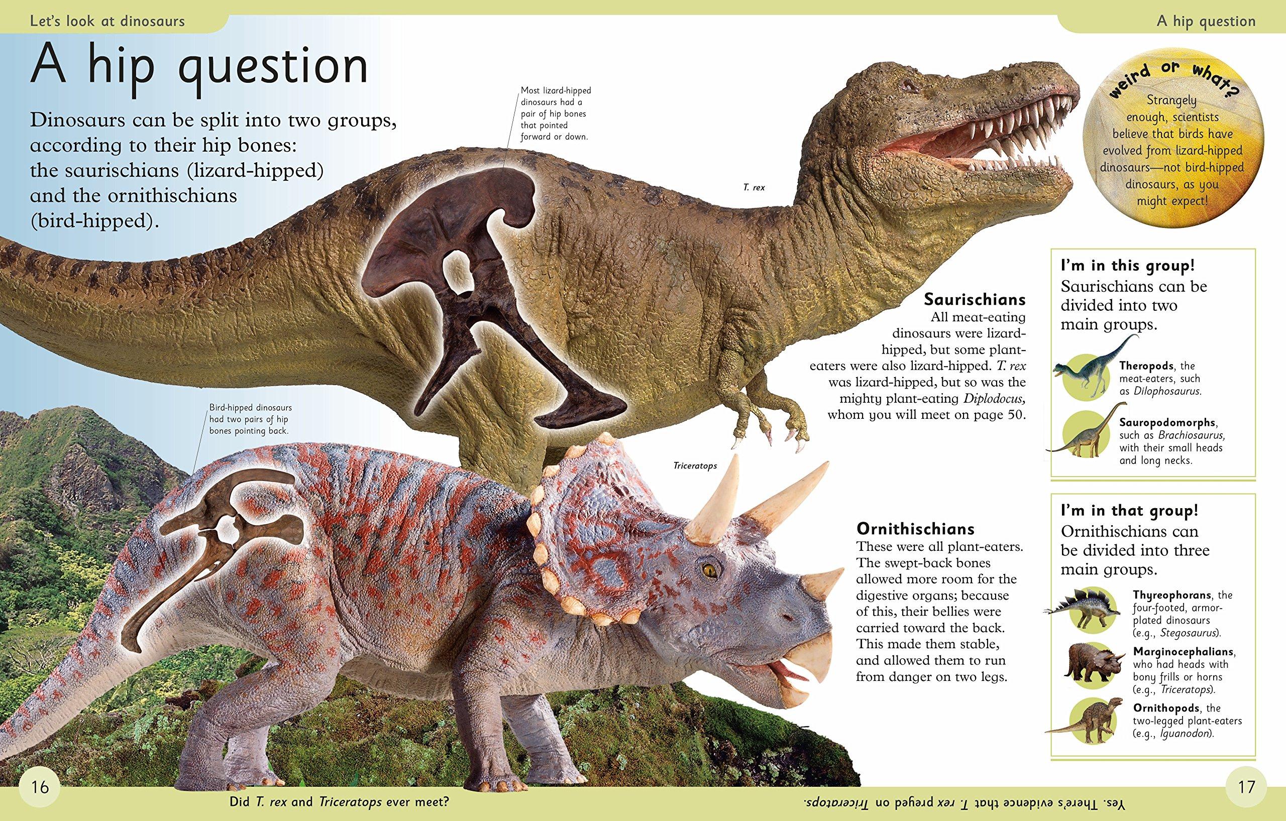 First Dinosaur Encyclopedia (DK First Reference) by DK Publishing Dorling Kindersley (Image #3)