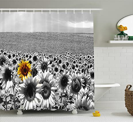 Wide Tap Shower Curtain By Ambesonne, Sunflower Field All Black And White  With A Single