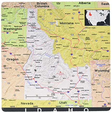 Amazon.com : 3drose Print of Idaho State Map In Exotic form - Mouse ...