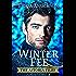 Winterfee: Urban Fantasy. Ein Roman aus der Welt der Astoria Files