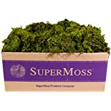 SuperMoss (22167) Sheet Moss Mini (Shredded) Preserved, Fresh Green, 3lbs