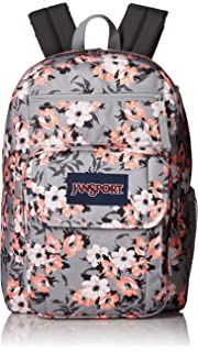Amazon.com  JanSport Right Pack Expressions Laptop Backpack - White ... c124853c51a49