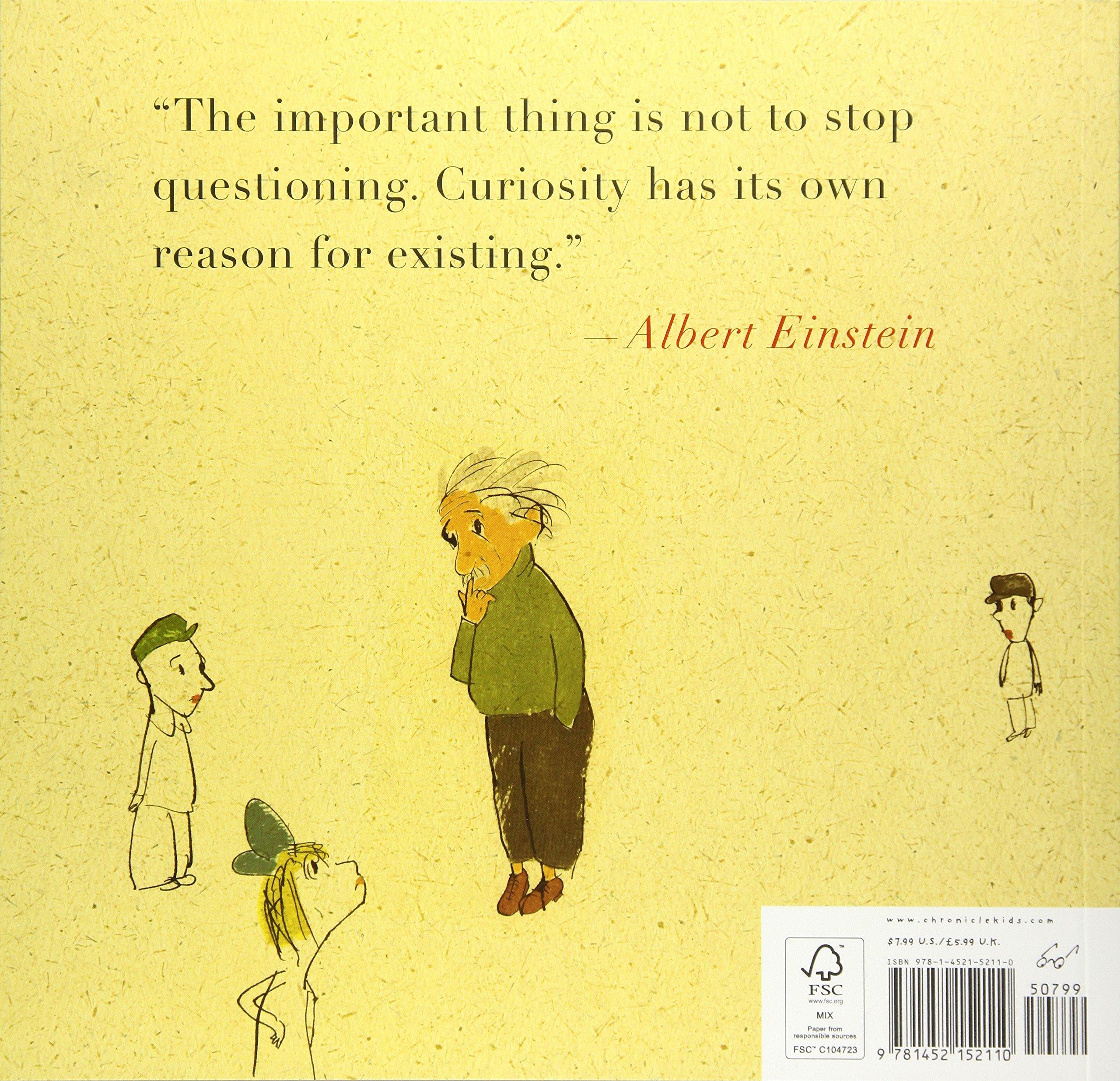 On A Beam Of Light: A Story Of Albert Einstein: Jennifer Berne, Vladimir  Radunsky: 9781452152110: Amazon: Books