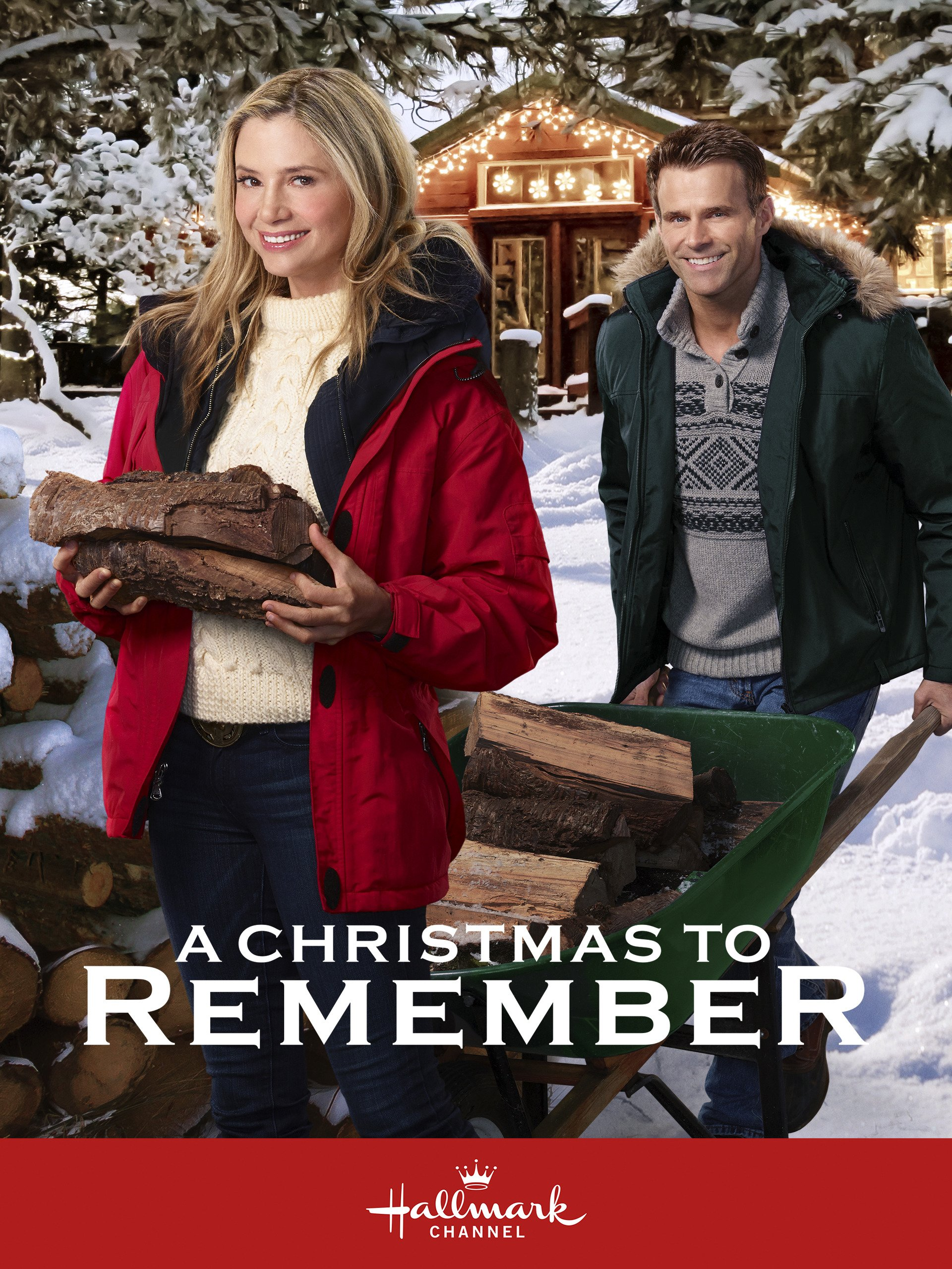 Amazon.com: A Christmas to Remember: Mira Sorvino, Cameron Mathison ...