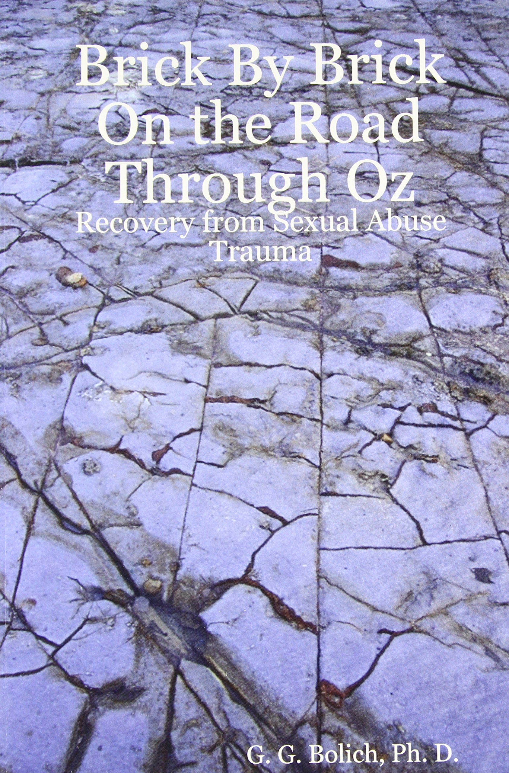 Download Brick by Brick on the Road Through Oz: Recovery from Sexual Abuse Trauma pdf