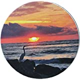 "Sunrise Vilano Beach Car Coaster Bird On Jetty Absorbent Stone 2.5"" St Augustine Cup Holder"