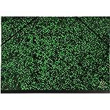 Exacompta Annonay Carton à Dessin avec Elastique A3 32 x 45 Vert