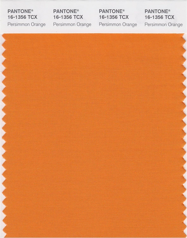 Amazon Com Pantone Smart 16 1356x Color Swatch Card Persimmon Orange Home Improvement