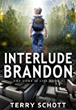 Interlude-Brandon (The Game is Life Book 3)