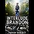 Interlude-Brandon (The Game is Life Book 3) (English Edition)
