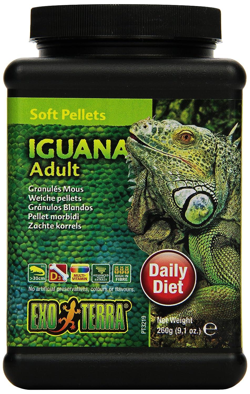 Exo Terra Soft Adult Iguana Food, 9.1-Ounce PT3219