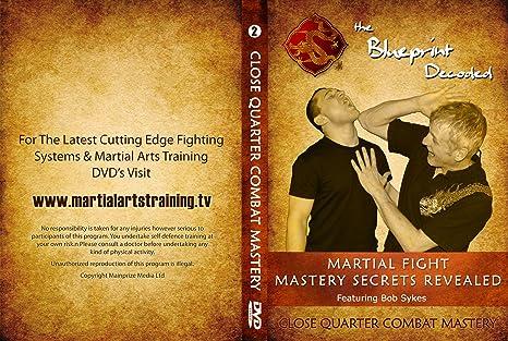 The blueprint decoded boxset martial arts mastery secrets the blueprint decoded boxset martial arts mastery secrets revealed amazon bob sykes lee mainprize dvd blu ray malvernweather Images
