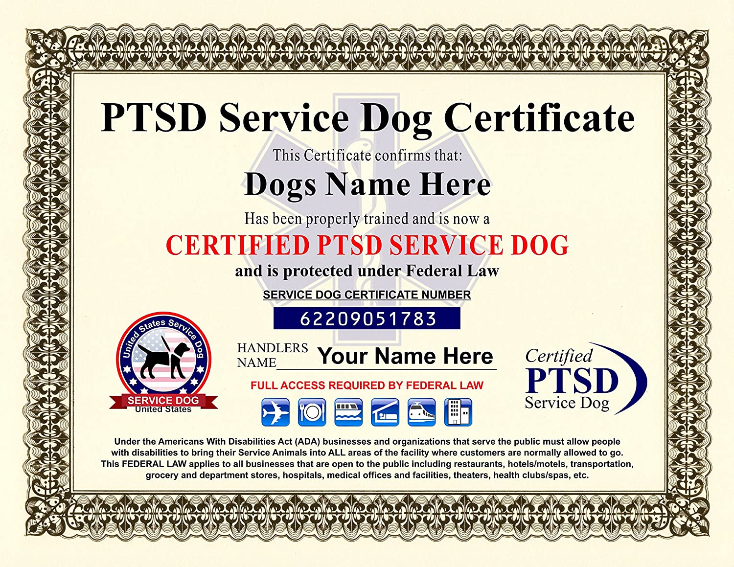 Amazon Ptsd Service Dog Certificate We Customize It With