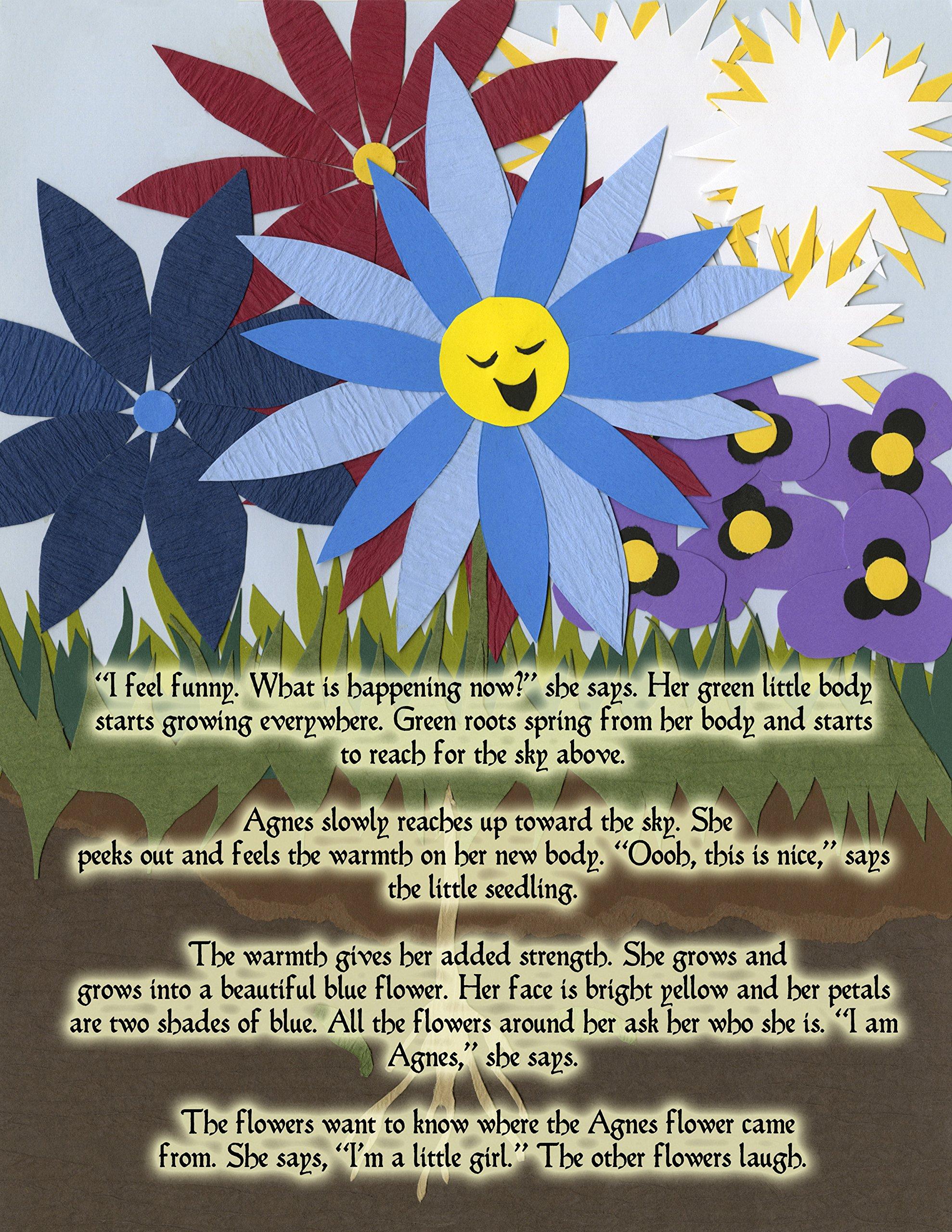 A Flower From Heaven Joey Dilon Andrew Salas 9780990748335