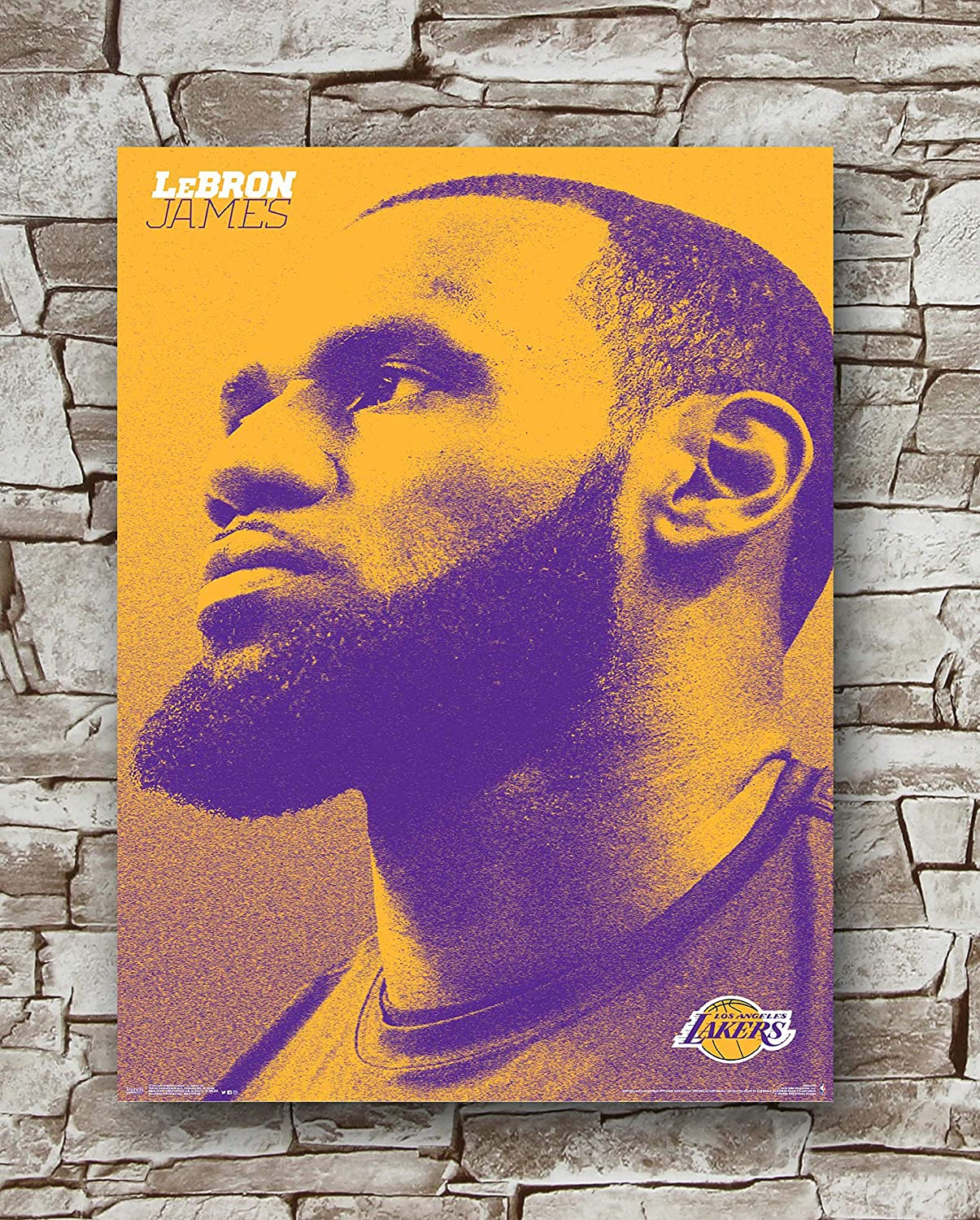 Los Angeles Lakers Lebron James Poster Standard Size | 18-Inches by 24-Inches | Lebron James Posters Wall Poster Print