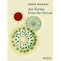Art Forms from the Ocean: The Radiolarian Prints of Ernst Haeckel