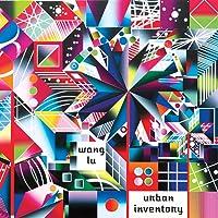 Wang Lu: Urban Inventory