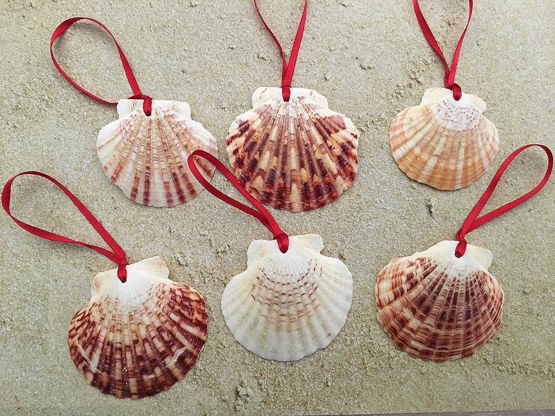 Glitter Seashell Beach Christmas Ornaments, 6