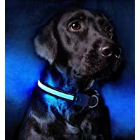 LED Dog Collar,USB Rechargeable Light Up Dog Collars 100% Waterproof Lighted Dog Collar Super Bright Dog Safety Lights…