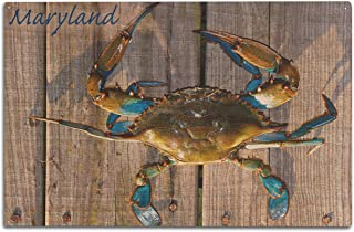 product image for Lantern Press Blue Crab on Dock - Maryland (10x15 Wood Wall Sign, Wall Decor Ready to Hang)