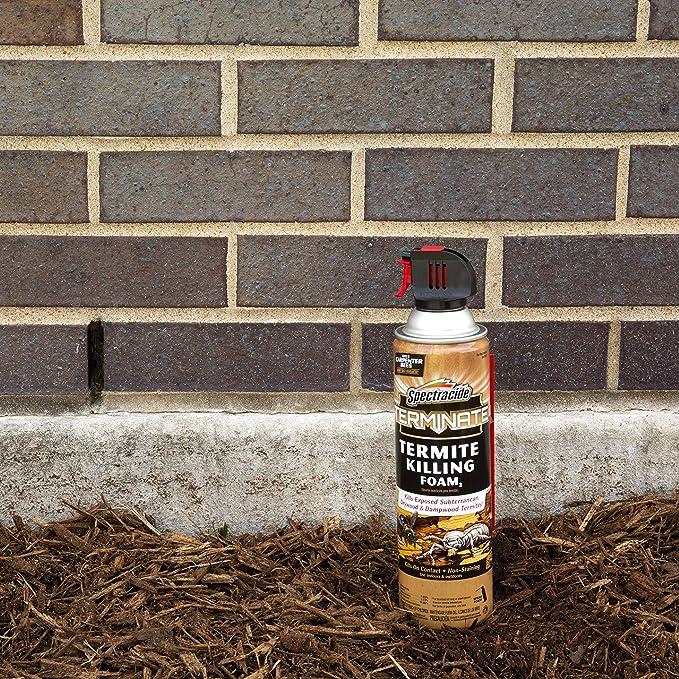Espuma para eliminar las termitas en aerosol de 473 ml de ...