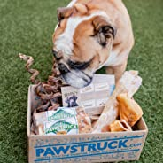 Pawstruck Natural Dog Chew Box: Small Dog (< 20 L