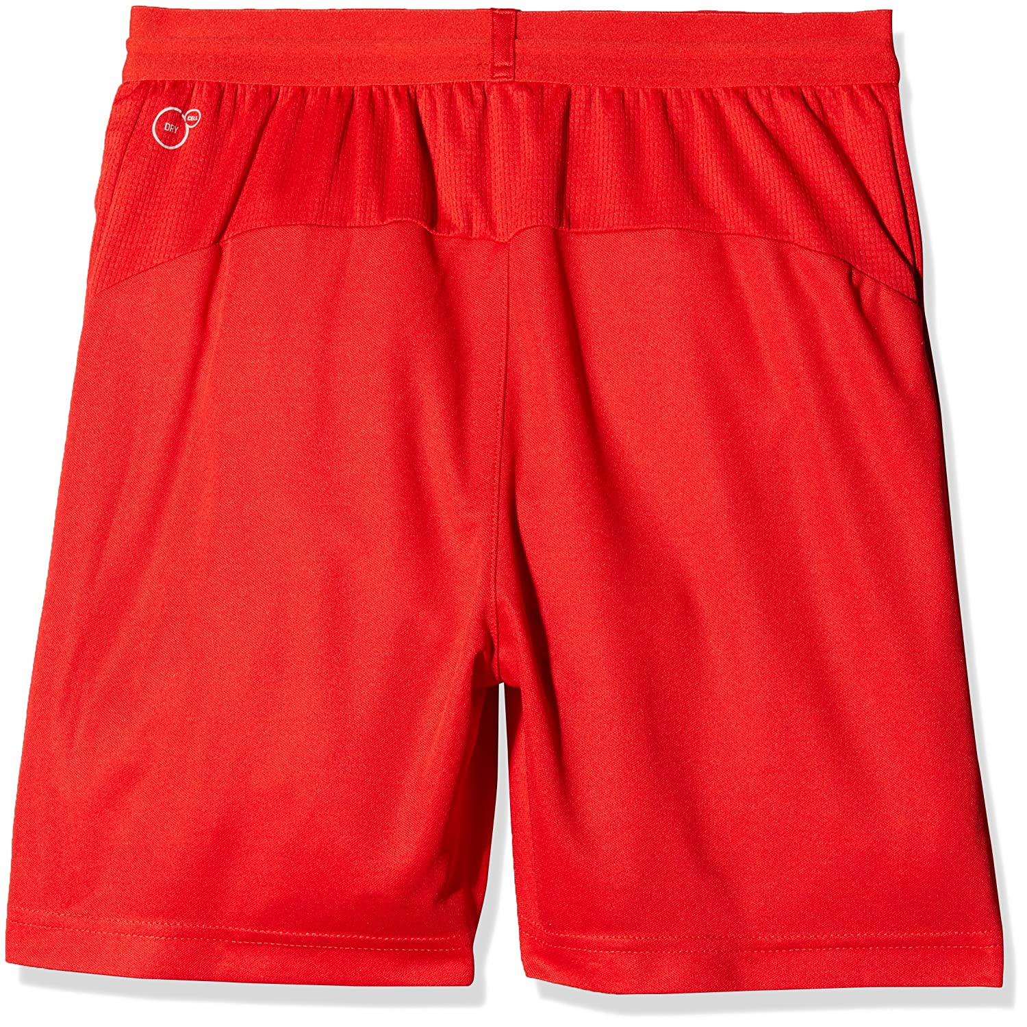 Puma  Suisse Kinder Replica Shorts with Hose Innerslip Hose with fd463c