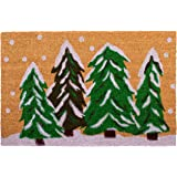 "Calloway Mills 122251729 Winter Wonderland Doormat, 17"" x 29"", Multicolor"