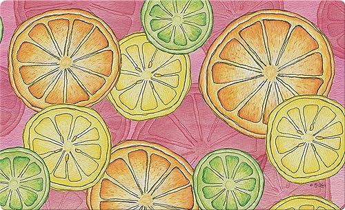 Toland Home Garden Citrus Toss 18 x 30 Inch Decorative Fruit Floor Mat Summer Doormat