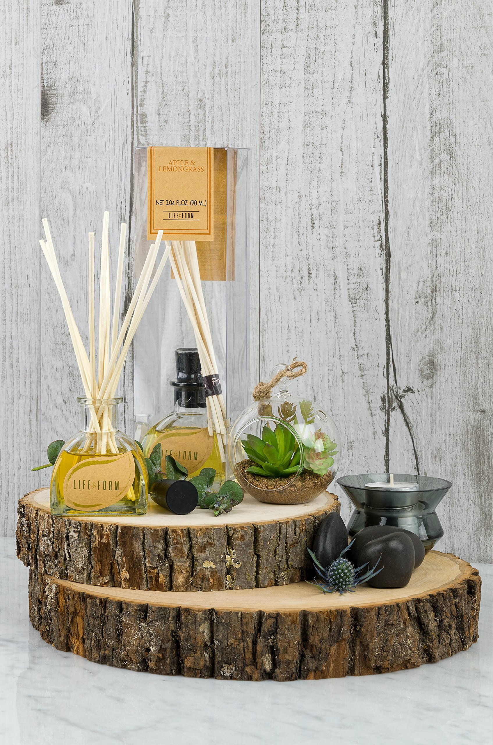 Life & Form Ocean Reed Diffuser Grand (3.38 fl.oz.) | Home Fragrance | by Life & Form (Image #3)
