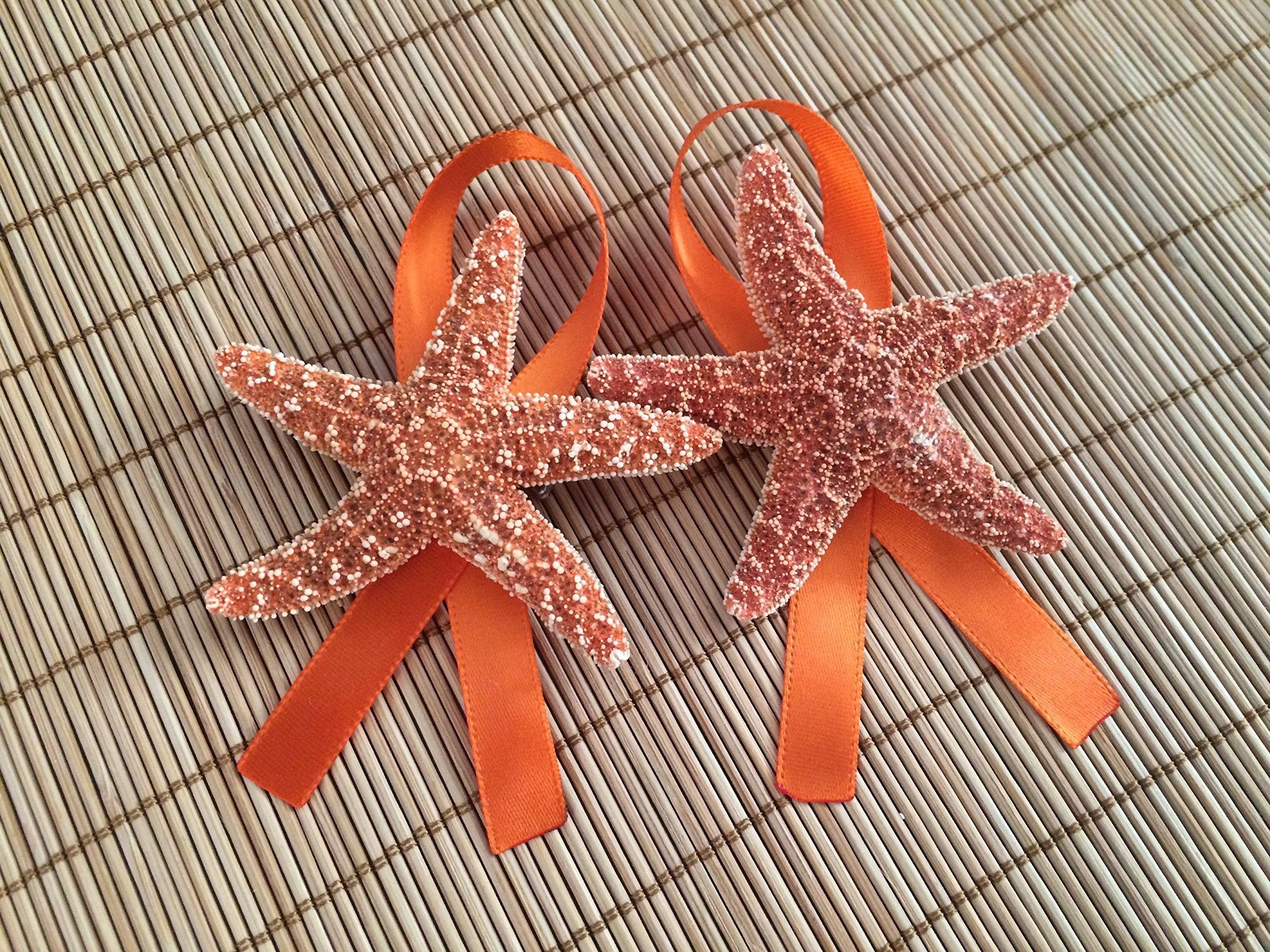 Men's Sugar Starfish Beach Wedding Boutonnieres with Ribbon, 2
