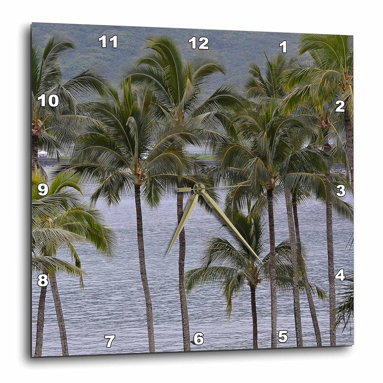 13 by 13 DPP/_192635/_2 3dRose Palm Trees at Kalapaki Bay in Kauai-Wall Clock