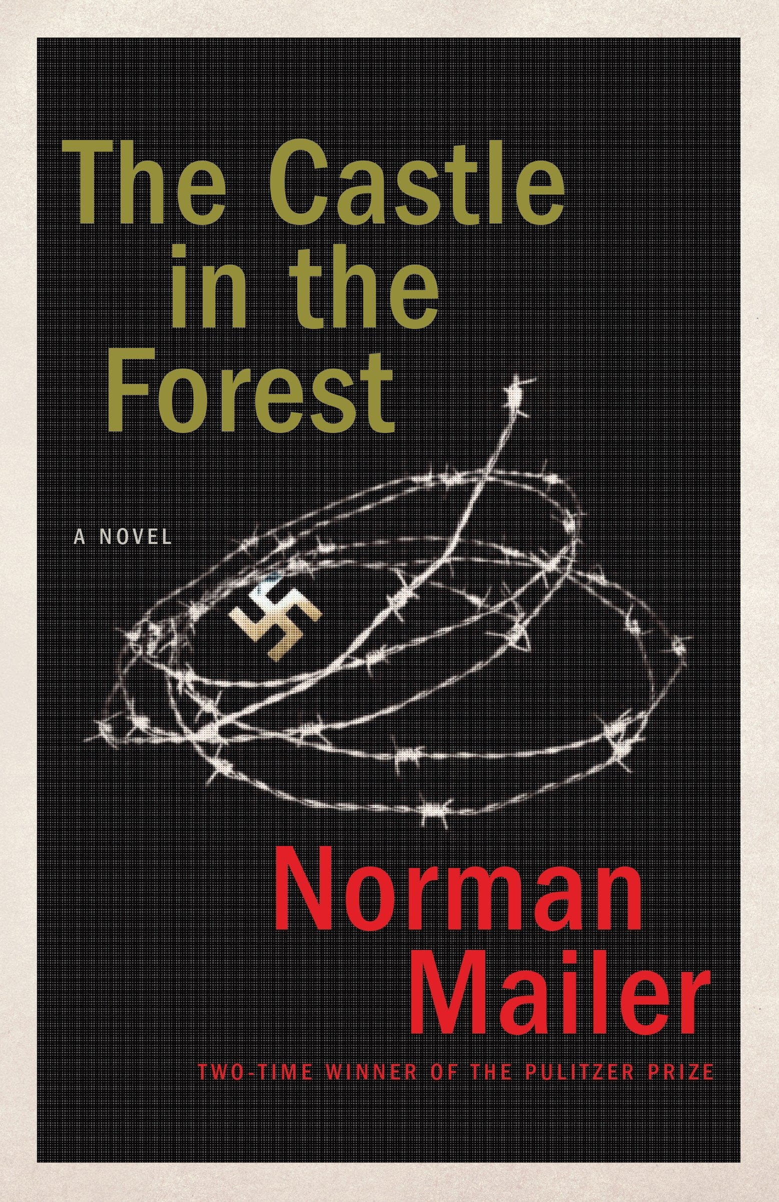 Download The Castle in the Forest: A Novel pdf epub