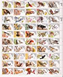 North American Wildlife Complete Sheet of 50 x 22 Cents Stamps 2286-2335 by USPS