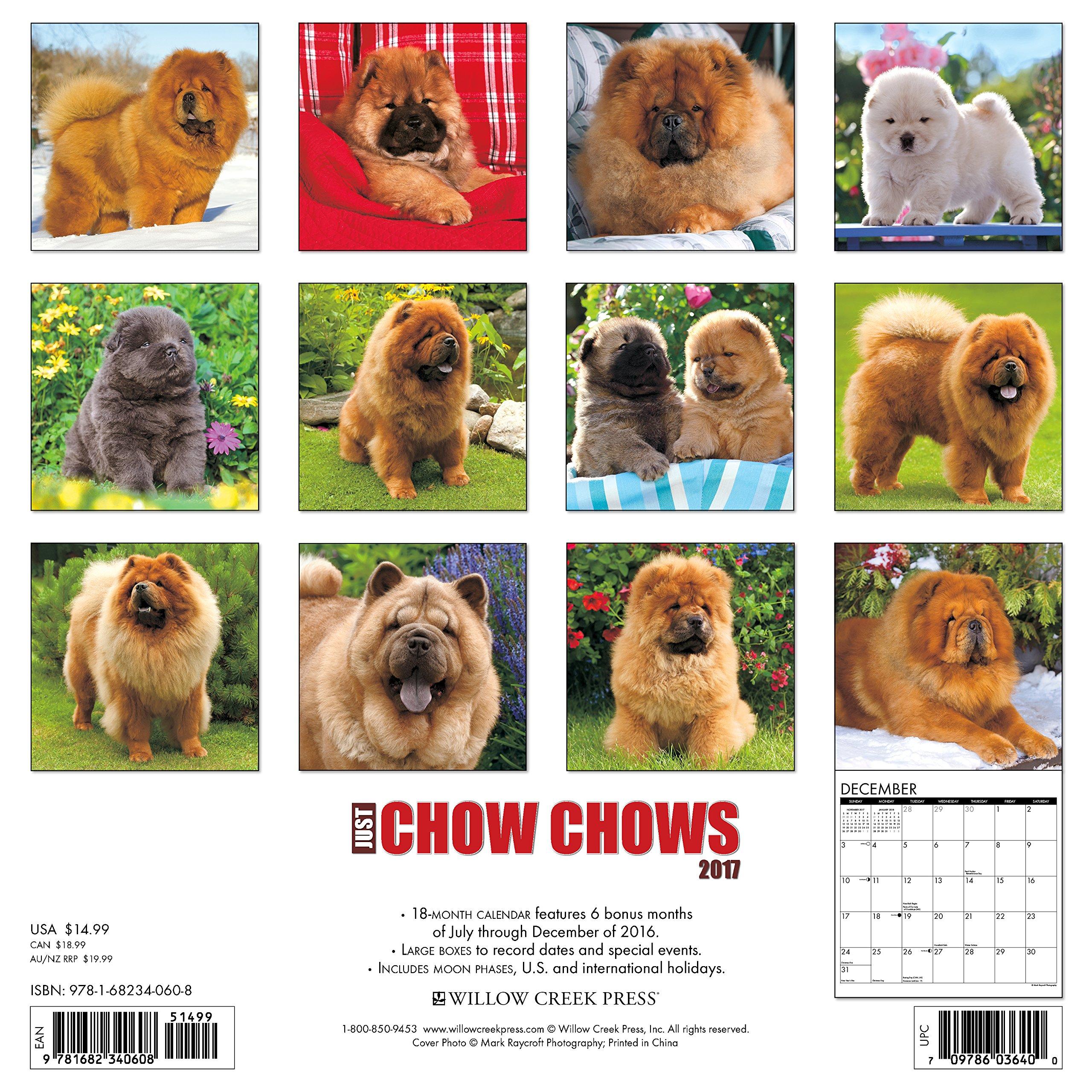 Amazon Just Chow Chows 2017 Wall Calendar Dog Breed Calendars