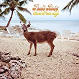 Fruit Bats Spelled In Bones Vinyl Amazon Com Music