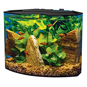 Best 5 gallon fish tanks aquarium kits for sale for Amazon fish tanks for sale