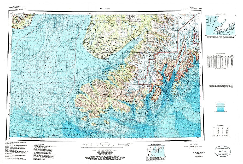 Amazon Com Seldovia Ak Topo Map 1 250000 Scale 1 X 3 Degree