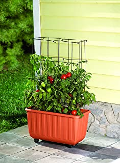 Rolling Self-Watering Tomato Planter and Tomato Tower Support - Polypropelene Planter and Powder Coated & Amazon.com : EMSCO Group City Picker Raised Bed Grow Box - Self ... Aboutintivar.Com