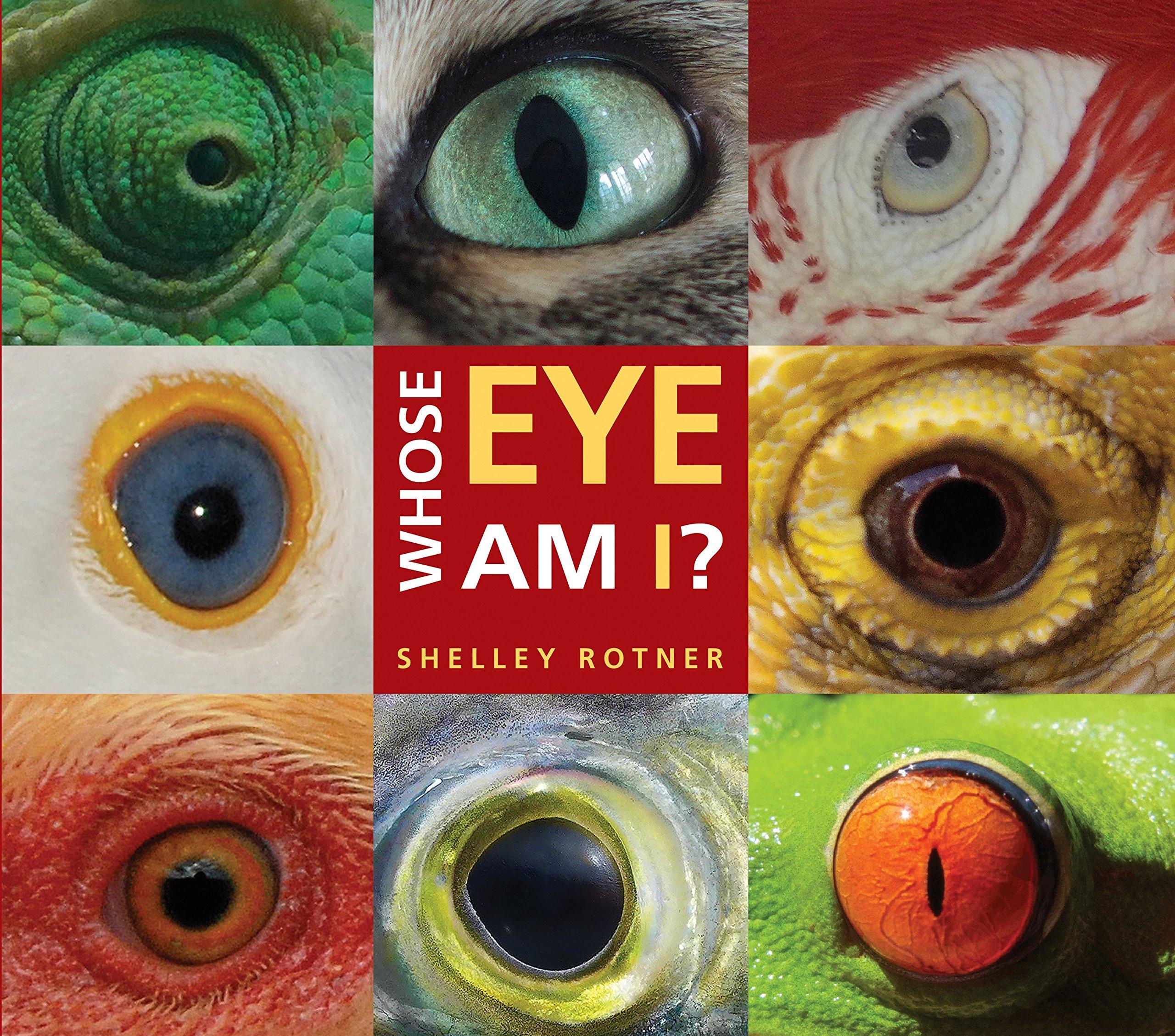 Whose Eye Am I?: Rotner, Shelley: 9780823435586: Amazon.com: Books