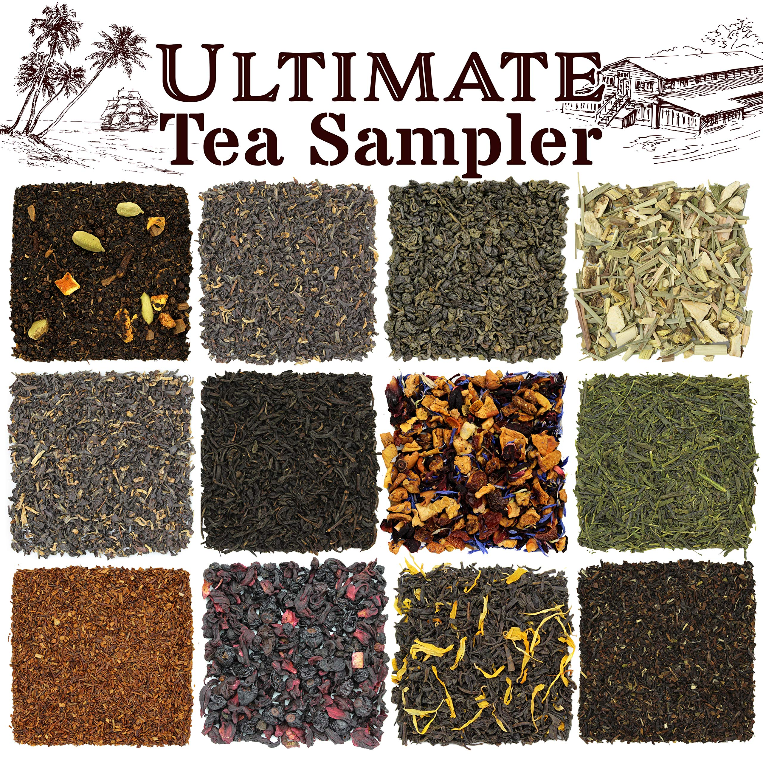 Solstice Loose Leaf Tea Ultimate Sampler Feat. 12 Teas; Sencha & Gunpowder Green Tea, Masala Chai Black Tea, Rooibos Herbal Tea, And More! Approx 180+ Servings by Solstice Tea Traders