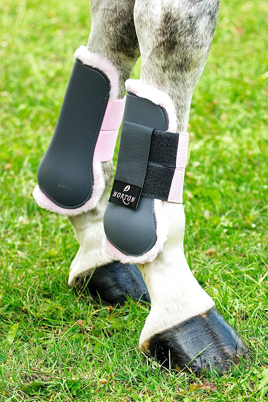Symantec Norton Pro tendon boot
