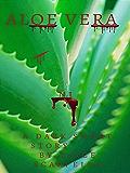 Aloe Vera: A dark short story by Dirce Scarpello  N.1