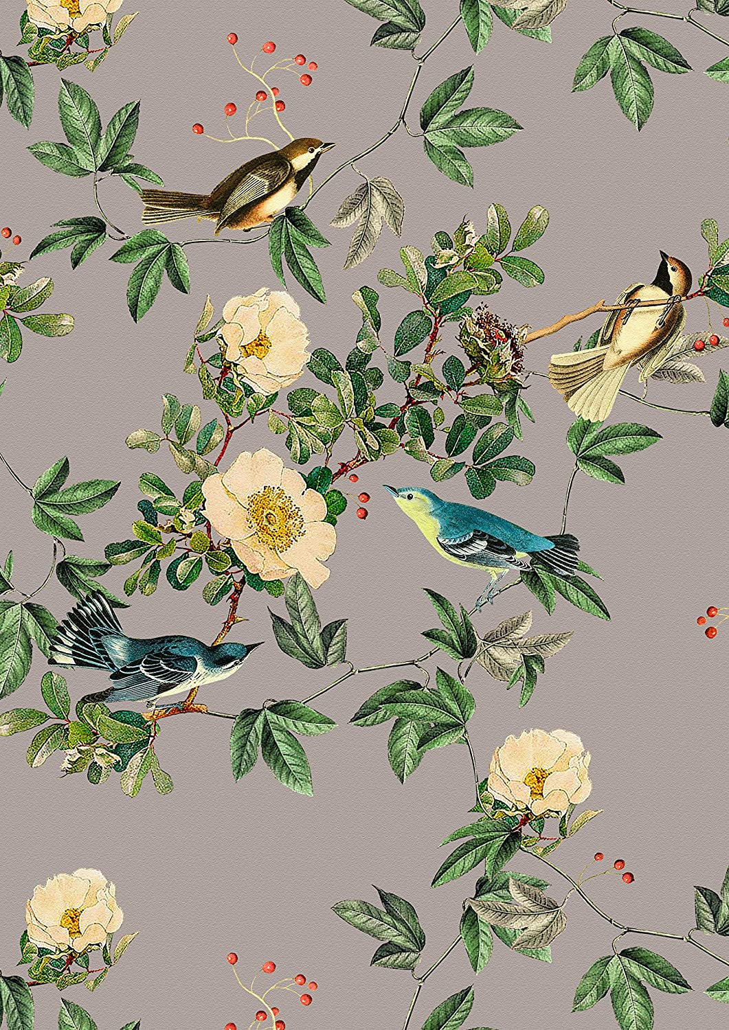 """/""""Wild Rose/"""" Taupe Wall Art Print Vintage Floral Birds by Celina Digby"""