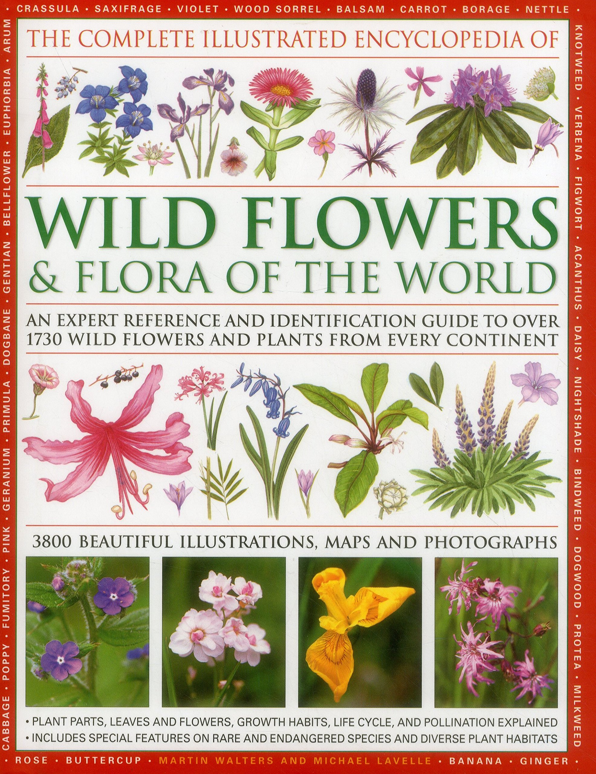 The complete illustrated encyclopedia of wild flowers flora of the the complete illustrated encyclopedia of wild flowers flora of the world an expert reference and identification guide to over 1730 wild flowers and izmirmasajfo