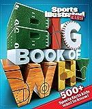 Big Book of WHY Sports (Sports Illustrated Kids Big Books)