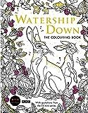 Watership Down: The Colouring Book (Macmillan Classic Colouring Books)
